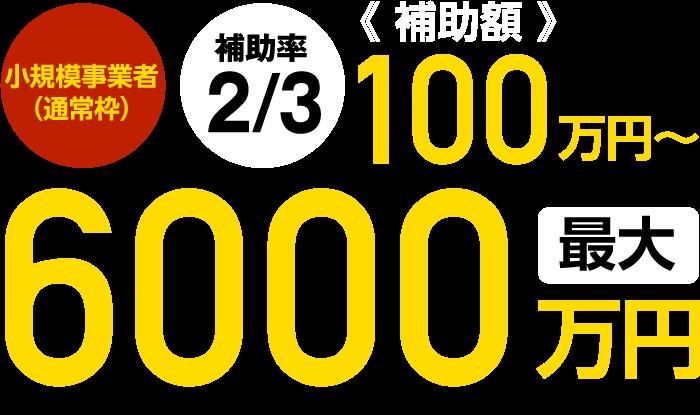 補助額6,000万円
