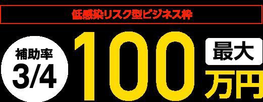 低感染リスク型ビジネス枠100万円